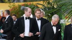 """Harry and William reconciled, but there is a """"but""""?"""